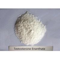 Buy cheap 99% Bodybuilding Steroid Powder Testosterone Enanthate for Muscle Mass CAS 315 product