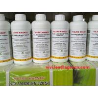 China Nicosulfuron 40g/L SC/herbicides/cotton herbicides/bottle with lable on sale