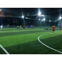 Buy cheap Indoor Soccer / Football Artificial Grass 13000 Dtex Environment Friendly from wholesalers