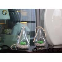 Wholesale Glass Plant Holders / Glass Plant Terrarium For Indoor Decoration from china suppliers