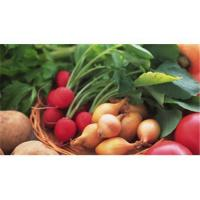 Buy cheap Dried fruits, Canned Vegetables - Processed Produce Ingredients - Boshin from wholesalers