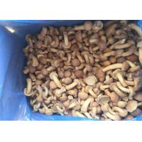 Buy cheap Grade A IQF Mushrooms / Frozen Cultivated Nameko Mushrooms With Typical Taste from wholesalers