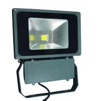 China OEM Exterior Advertising Signs High Power Led Flood Lights 80W AC100 - 240V for Gymnasium on sale