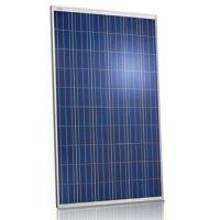 Wholesale Pool 250 Watt Polycrystalline Solar Panel 36V Withstand High Wind Pressure from china suppliers