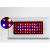 120w 112pcs Led Plant Growing Lights For Garden, Plant-Breeding House Manufactures