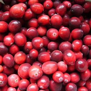 Cranberry P.E. Manufactures