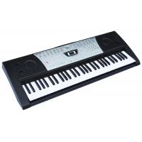 Wholesale 61 KEYS NEW Standard Electronic keyboard Piano touch response ARK-2191 from china suppliers