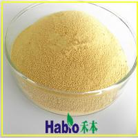 Buy cheap food grade lipase enzyme from wholesalers