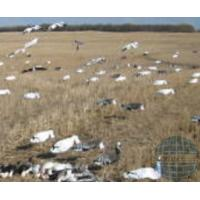 Buy cheap OEM decoys from wholesalers