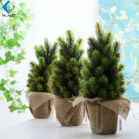 Wholesale Mini Indoor Green Plants , Bonsai Christmas Tree For Table Ornament from china suppliers