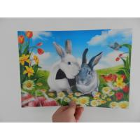 Wholesale china OK3D factory plastic Lenticular Printing Photo-3D motions effect flip photo decoration lenticular photo from china suppliers