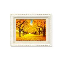 Buy cheap Beautiful Nature Scenery 5D Pictures 30x40cm 5D Deep Effect 0.6mm PET from wholesalers