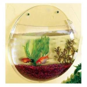 Acrylic Aquarium Tank
