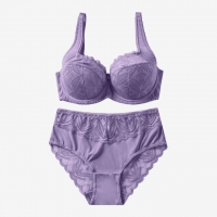 Buy cheap High Quality Comfortable Women's Bra And Panty Set Lace Underwear And Bra Sets D Cup from wholesalers