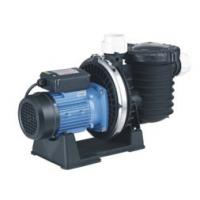 SCPB Series Centrifugal Swimming Pool Pump Manufactures