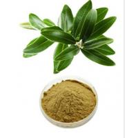 Buy cheap Natural Olive Leaf Extract / Oleuropein 25% By HPLC CAS NO. 32619-42-4 from wholesalers