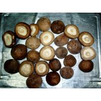 Buy cheap IQF Frozen Mushroom from wholesalers
