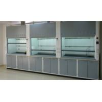 Wholesale Stainless Steel Laboratory Vent Hood / Modern Fume Hood Protect Lab Environment from china suppliers