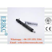Wholesale Diesel Original Delphi Injectors Injector Excavator 2501Z EJBR02501Z from china suppliers