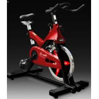 Buy cheap Indoor Gym Horizon Spinning Bike from wholesalers