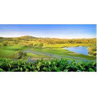 Buy cheap Custom Orlando Golf Packages Service Vacations Beautiful Resort View Comfortable from wholesalers