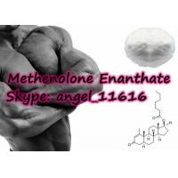 Buy cheap Primobolan Depot Steroids Methenolone Enanthate Bobybuilding White Powder from wholesalers