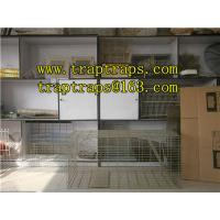 Buy cheap Live Animal Traps/Cage from wholesalers