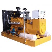 Wholesale 50kw Water Cooled Natural Gas Backup Generator, H Class Insulation System from china suppliers