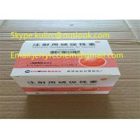 Buy cheap Legit HCG Injectable Human Growth Hormone Peptides Powder / Human Chorionic Gonadotropin Safe Human Growth Hormone from wholesalers