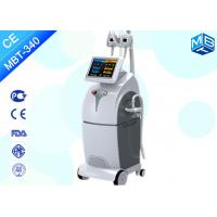 China Cryolipolysis Therapy Frozen Cellulite Reduction Slimming Body Shaping Machine in USA on sale