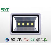 COB / 4PCS Type Outdoor Led Flood Lights High Power For Tunnel / Subway Manufactures