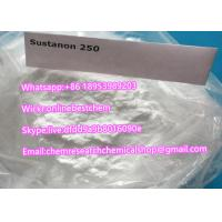 Buy cheap Testosterone Blend Recipe Sustanon 250 Raw Steroid Powder Testosterone Sustanon 250 powder usage in steroids cycle from wholesalers