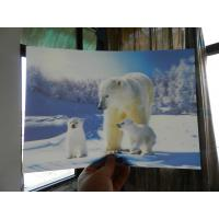 Wholesale OK3D home decoration and advertising exhibition 3d art photos printing wedding photos with magic 3d lenticular effect from china suppliers