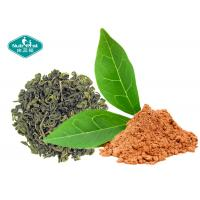 Buy cheap Natural Botanical Extracts 98.0% Polyphenols Green Tea Extract with EGCG 98% from wholesalers