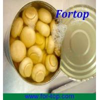 Buy cheap Canned Champignon Mushroom Whole in Brine from wholesalers