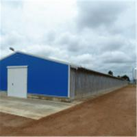 Professional Design Light Steel Structure Poultry Commercial Chicken Houses Chicken house Manufactures