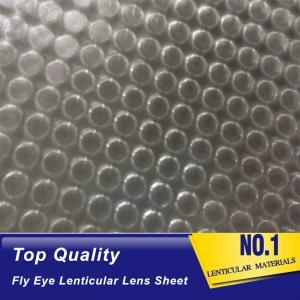 Wholesale OK3D fly eye 3d sheet new product dot lens sheet 3d effect 360 degrees lenticular sheet arrays fly eye lenses sheet from china suppliers