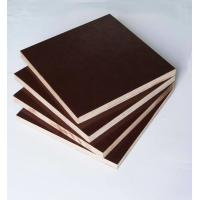 Wholesale Film Faced Poplar Plywood For Construction, High strength and reusded times from china suppliers