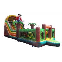 Buy cheap Pirate Inflatable Bounce House With Slide For Large Playgrounds / Leisure Center from wholesalers