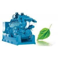 Deutz Series Low Concentration Coal Bed Gas Generator Manufactures