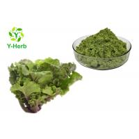 Buy cheap Collard Leaf Vegetable Extract Powder Purple Green Curly Kale Juice Concentrate Powder from wholesalers
