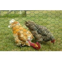 Buy cheap PVC coated hexagonal wire netting/ chicken mesh from wholesalers