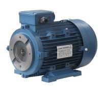 Buy cheap Y2SH100L-4  Three Phase Induction Motor 2.2kw 3hp from wholesalers