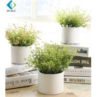 Wholesale Living Room Artificial Green Plants 20cm Height Customized Design from china suppliers