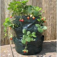 Buy cheap China wholesale any size waterproof polyethylene bags used for garden from wholesalers