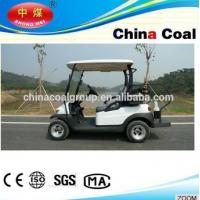 gas golf cart 2seater Manufactures