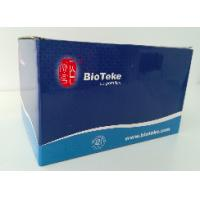 Buy cheap Genomic DNA Extraction Kit , RNA / DNA Purification Plus Kit RP5411 & RP5412 from wholesalers