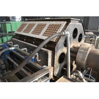 Buy cheap Wine Tray / Shoe Tray / Egg Tray Production Line Rotary Forming Type Compact Design from wholesalers