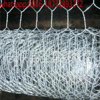 China Hexagonal Wire Mesh, Chicken Wire for Bird Cage, Poultry Wire 1/2''/ chicken wire mesh hex wire mesh on sale