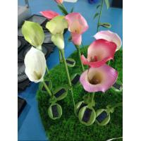 Wholesale solar energy inserts natural touch flower and plant led scalla lily solar lamp garden from china suppliers